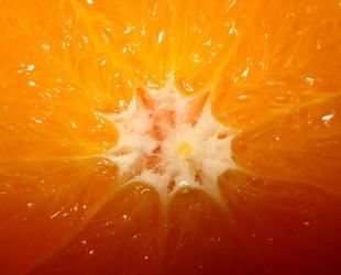 Orange and Coconut Treat